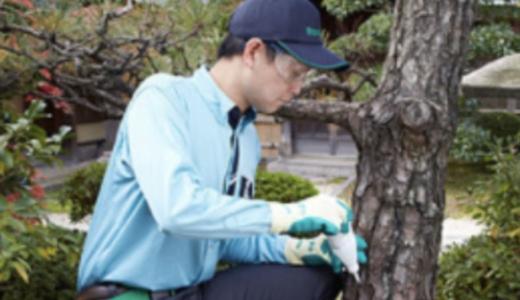 庭木につきやすい害虫を駆除する方法とは?具体的な対処法のまとめ